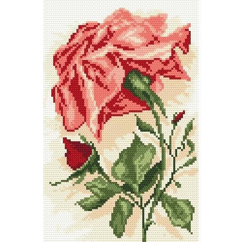 Aida z nadrukiem - Róża czerwona
