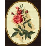 Aida z nadrukiem - Różana gałązka