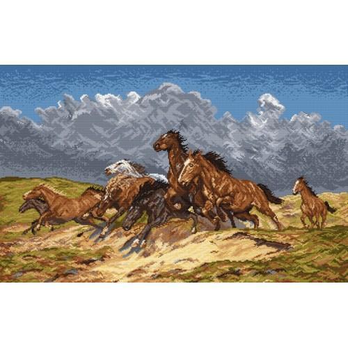 Aida z nadrukiem - Mustangi