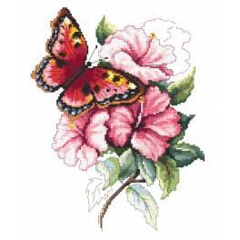 Aida z nadrukiem - Kolorowy motyl