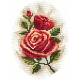 Aida z nadrukiem - Róże