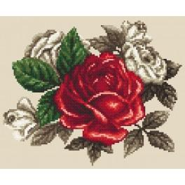 Aida z nadrukiem - Czerwona róża