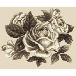 Aida z nadrukiem - Róże w sepii