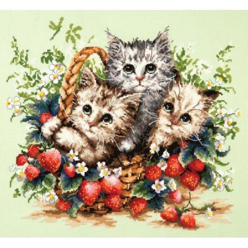 MN 58-12 Zestaw do haftu - Małe kotki
