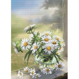 Zestaw z muliną i podmalowanym tłem - Kwiaty rumianku