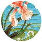 Zestaw z muliną - Kolorowy koliber