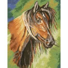 Zestaw z muliną - Mustang