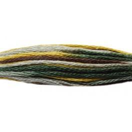 952COL-4521 Mulina DMC Coloris