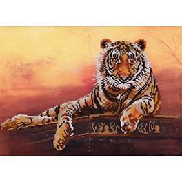 Zestaw z koralikami - Tygrys