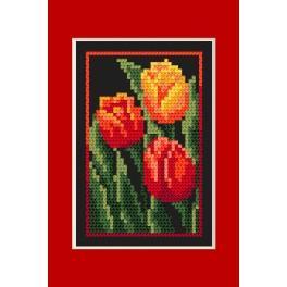 Zestaw z muliną - Kartka urodzinowa - Tulipany