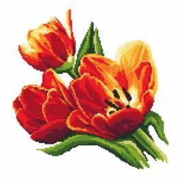 Zestaw z muliną i koralikami - Zachwycające tulipany