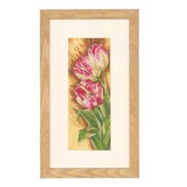 Zestaw z muliną i podmalowanym tłem - Tulipany