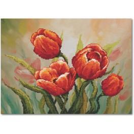 Zestaw z muliną i podmalowanym tłem – Dostojne tulipany