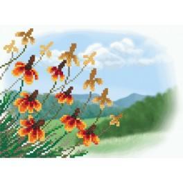 ZA 11116 Zestaw z muliną i podmalowanym tłem - Jesienne kwiaty