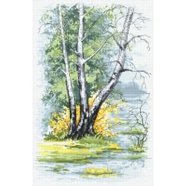 Zestaw z nadrukiem i muliną - Wiosenne brzozy