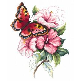 Zestaw z nadrukiem i muliną - Kolorowy motyl