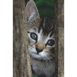 Zestaw z nadrukiem i muliną - Kotek przez płotek