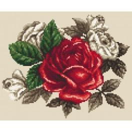 Zestaw z nadrukiem i muliną - Czerwona róża
