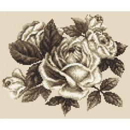 Zestaw z nadrukiem i muliną - Róże w sepii