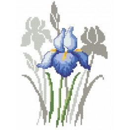 Zestaw z nadrukiem i muliną - Wiosenne kwiaty - Irysy