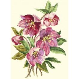 Zestaw z nadrukiem i muliną - Kwiaty zimy