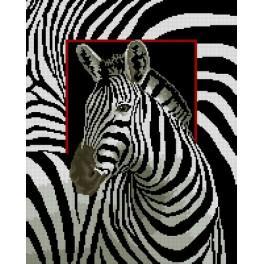 Wzór graficzny - Zebra