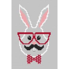 Wzór graficzny online – Kartka - Hipster rabbit boy