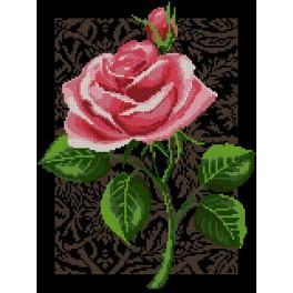 3075 Kanwa z nadrukiem - Róża