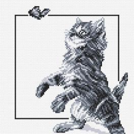Kanwa z nadrukiem -Kotek i motylek