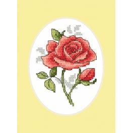 Zestaw z muliną i kartką - Kartka okolicznościowa - Róża