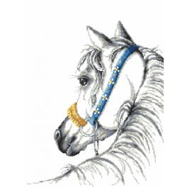 Wzór graficzny online - Koń arabski