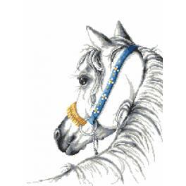 Zestaw z nadrukiem i muliną - Koń arabski