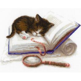 Zestaw z włóczką - Kotek na książce