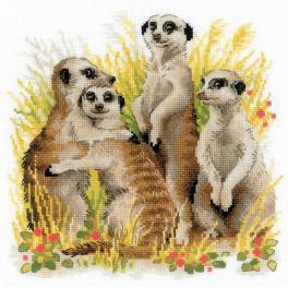 Zestaw z włóczką - Surykatki