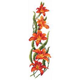 Kanwa z nadrukiem - Powabne liliowce