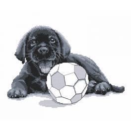 Wzór graficzny - Labrador - Pobaw się ze mną