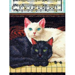 Zestaw z muliną - Czarny i biały kot