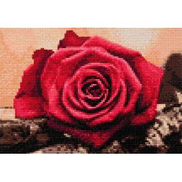 Zestaw do diamond painting - Czerwona róża