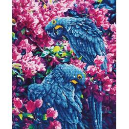 Zestaw do diamond painting - Niebieskie papugi