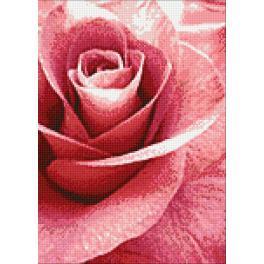 Zestaw do diamond painting - Różowa róża