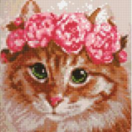 Zestaw do diamond painting - Kot panna młoda