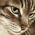 Zestaw do diamond painting - Tajemniczy kot