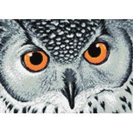 Zestaw do diamond painting - Spojrzenie sowy