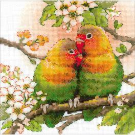 Zestaw z włóczką - Papużki nierozłączki