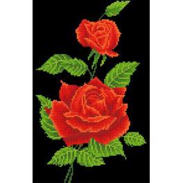 Zestaw do diamond painting - Czerwona róża korsarz