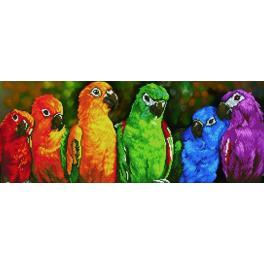 Zestaw do diamond painting - Tęczowe papugi