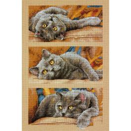 Zestaw z muliną - Kot Max