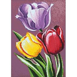 Zestaw do diamond painting - Pachnące tulipany