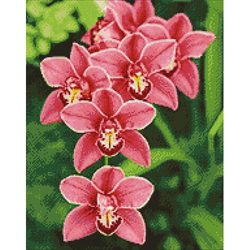 Zestaw do diamond painting - Orchidea