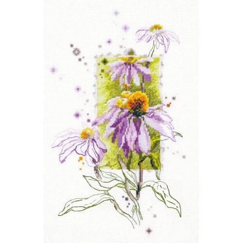 Zestaw z muliną - Echinacea